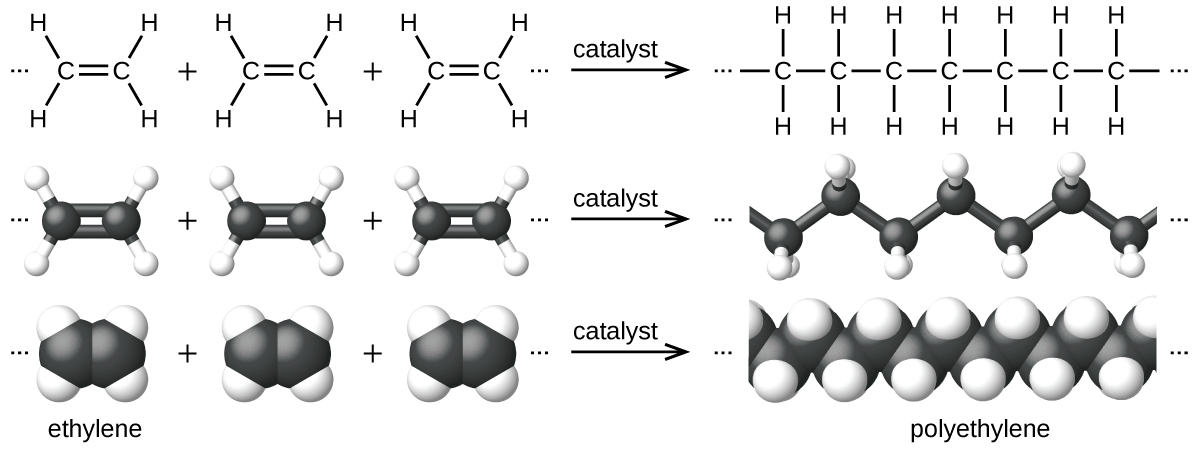 This diagram has three rows, showing ethylene reacting to form polyethylene. In the first row, Lewis structural formulas show three molecules of ethylene being added together, which are each composed of two doubly bonded C atoms, each with two bonded H atoms. Ellipses, or three dots, are present before and after the molecule structures, which in turn are followed by an arrow pointing right. On the right side of the arrow, the ellipses or dots again appear to the left of a dash that connects to a chain of 7 C atoms, each with H atoms connected above and below. A dash appears at the end of the chain, which in turn is followed by ellipses or dots. The reaction diagram is repeated in the second row using ball-and-stick models for the structures. In these representations, single bonds are represented with sticks, double bonds are represented with two parallel sticks, and elements are represented with balls. Carbon atoms are black and hydrogen atoms are white in this image. In the third row, space-filling models are shown. In these models, atoms are enlarged spheres which are pushed together, without sticks to represent bonds.