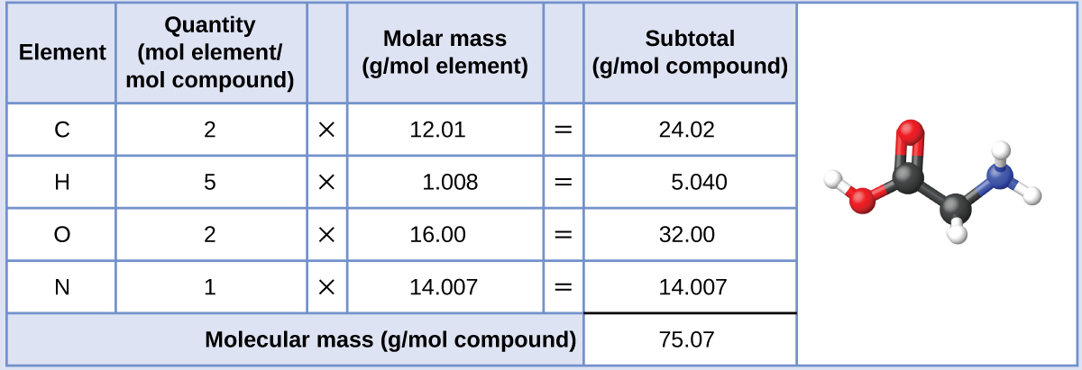 """A table is shown that is made up of six columns and six rows. The header row reads: """"Element,"""" """"Quantity (mol element / mol compound,"""" a blank space, """"Molar mass (g / mol element),"""" a blank space, and """"Subtotal (a m u)."""" The first column contains the symbols """"C,"""" """"H,"""" """"O,"""" """"N,"""" and a merged cell. The merged cell runs the width of the first five columns. The second column contains the numbers """"2,"""" """"5,"""" """"2,"""" and """"1"""" as well as the merged cell. The third column contains the multiplication symbol in each cell except for the last, merged cell. The fourth column contains the numbers """"12.01,"""" """"1.008,"""" """"16.00,"""" and """"14.007"""" as well as the merged cell. The fifth column contains the symbol """"="""" in each cell except for the last, merged cell. The sixth column contains the values """"24.02,"""" """"5.040,"""" """"32.00,"""" """"14.007,"""" and """"75.07."""" There is a thick black line under the number 14.007. The merged cell under the first five columns reads """"Molar mass (g / mol compound). There is a ball-and-stick drawing to the right of this table. It shows a black sphere that forms a double bond with a slightly smaller red sphere, a single bond with another red sphere, and a single bond with another black sphere. The red sphere that forms a single bond with the black sphere also forms a single bond with a smaller, white sphere. The second black sphere forms a single bond with a smaller, white sphere and a smaller blue sphere. The blue sphere forms a single bond with two smaller, white spheres each."""