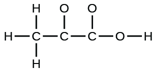 A Lewis structure is shown. A carbon atom is single bonded to three hydrogen atoms and another carbon atom. The second carbon atom is single bonded to an oxygen atom and a third carbon atom. This carbon is then single bonded to two oxygen atoms, one of which is single bonded to a hydrogen atom.