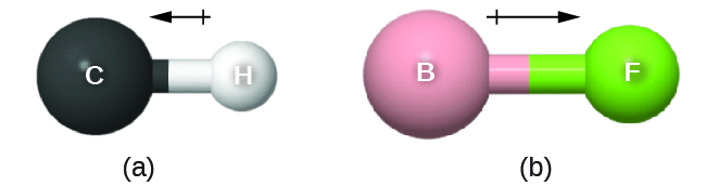 """Two images are shown and labeled, """"a"""" and """"b."""" Image a shows a large sphere labeled, """"C,"""" a left-facing arrow with a crossed end, and a smaller sphere labeled """"H."""" Image b shows a large sphere labeled, """"B,"""" a right-facing arrow with a crossed end, and a smaller sphere labeled """"F."""""""