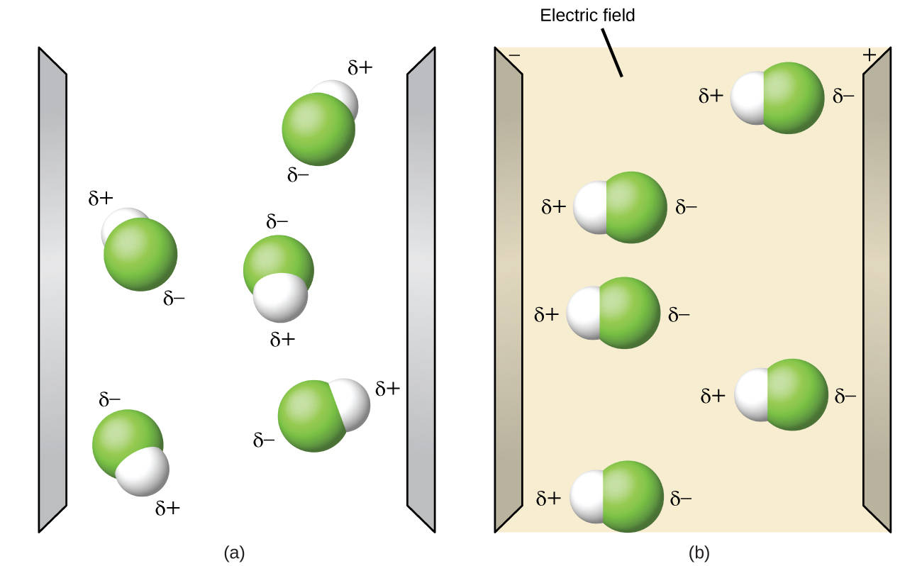 """Two diagrams are shown and labeled """"a"""" and """"b."""" Diagram a shows two vertical, gray electrodes. There are five molecules in between. The molecules are separate from one another and are composed of a hydrogen atom bonded to a fluorine atom. The fluorine atom is labeled with a dipole symbol and a superscripted negative sign while the hydrogen atom is labeled with a dipole symbol and a superscripted positive sign. The molecules are randomly oriented in the space. The right diagram also shows two vertical gray electrodes, the left labeled as negative and the right labeled as positive. The space between is yellow. The same molecules are present, but this time they are all facing horizontally, with the hydrogen-end of each molecule facing toward the negative electrode."""