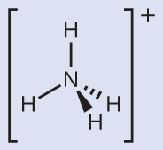 A Lewis structure depicts a nitrogen atom that is single bonded to four hydrogen atoms. The structure is surrounded by brackets and has a superscripted positive sign. This figure uses dashes and wedges to displays its three planes in a tetrahedral shape.