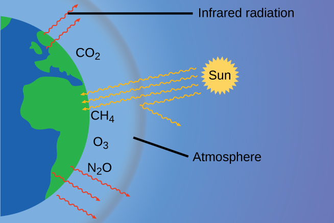 """This diagram shows half of a two dimensional view of the earth in blue and green at the left of the image. A slight distance outside the hemisphere is a grey arc. A line segment connects the label """"Atmosphere"""" to the region between the hemisphere and the grey arc. In this region, near the surface of the earth the chemical formulas C O subscript 2, C H subscript 3, and N subscript 2 O appear. Five red arrows formed from wavy lines extend from green regions on the earth out into and just beyond the region labeled """"Atmosphere."""" The label """"Infrared radiation"""" points to one of these red arrows. At a fair distance outside of the grey arc appears a yellow circle with a jagged boundary. This circle is labeled """"Sun."""" From it extend yellow arrows with wavy lines which extend toward the earth. Three of the arrows extend to the green region on the earth. One of the arrows appears to be reflected off the grey arc, causing its path to turn away from the earth."""