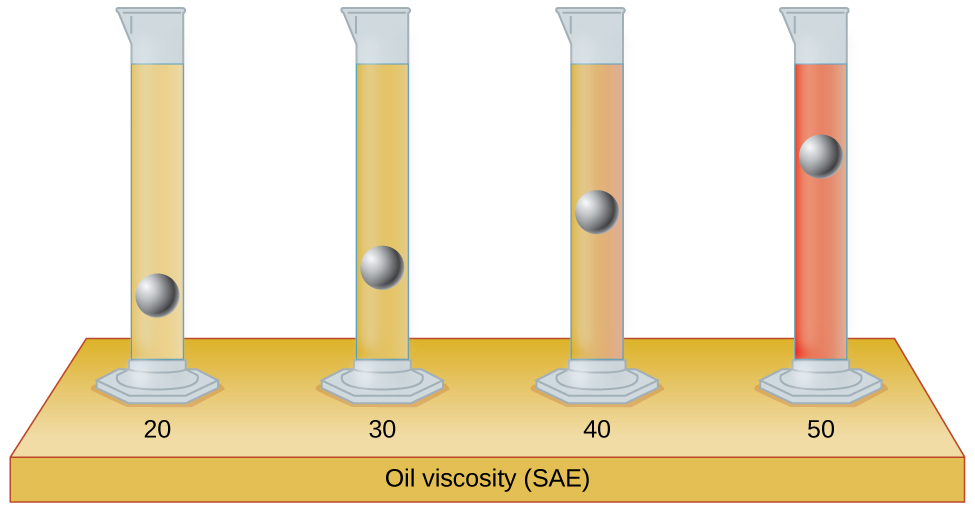 """An image of four graduated cylinders sitting on a table labeled """"Oil viscosity ( S A E )"""" is shown. The left-hand cylinder, labeled """"20,"""" is mostly filled with light tan liquid and a metal ball is drawn in the lower fifth of the cylinder, but not on the bottom. The second cylinder, labeled """"30,"""" is mostly filled with light brown liquid and a metal ball is drawn about three-fourths of the way down cylinder. The third cylinder, labeled """"40,"""" is mostly filled with medium brown liquid and a metal ball is drawn halfway down the cylinder. The right-hand cylinder, labeled """"50,"""" is mostly filled with brown liquid and a metal ball is drawn near the top of the liquid in the cylinder."""