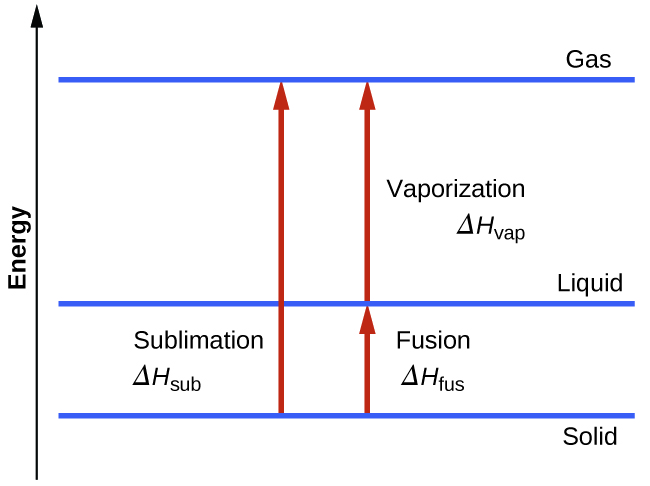 """A diagram is shown with a vertical line drawn on the left side and labeled """"Energy"""" and three horizontal lines drawn near the bottom, lower third and top of the diagram. These three lines are labeled, from bottom to top, """"Solid,"""" """"Liquid"""" and """"Gas."""" Near the middle of the diagram, a vertical, upward-facing arrow is drawn from the solid line to the gas line and labeled """"Sublimation, delta sign, H, subscript sub."""" To the right of this arrow is a second vertical, upward-facing arrow that is drawn from the solid line to the liquid line and labeled """"Fusion, delta sign, H, subscript fus."""" Above the second arrow is a third arrow drawn from the liquid line to the gas line and labeled, """"Vaporization, delta sign, H, subscript vap."""""""