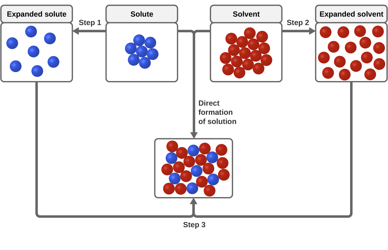 """The top, central region of the figure shows solute particles as seven blue spheres and solvent particles as 16 red spheres in separate, labeled boxes. The particles in these boxes are touching. An arrow labeled """"Step 1"""" points left of the solute box, and shows the blue spheres no longer touching in another box labeled """"expanded solute."""" An arrow labeled """"Step 2"""" points right from the solvent box and shows the red spheres no longer touching in another box labeled """"expanded solvent."""" Arrows proceed from the bottom of the expanded solute and expanded solvent boxes and join at the bottom of the figure where a step 3 label is shown. The joined arrows point to a box just above in which the red and blue spheres are mixed together and touching. The solute and solvent boxes are joined by another arrow labeled """"direct formation of solution"""" which points downward at the center of the figure. This arrow also points to the box containing mixed red and blue spheres near the bottom of the figure."""
