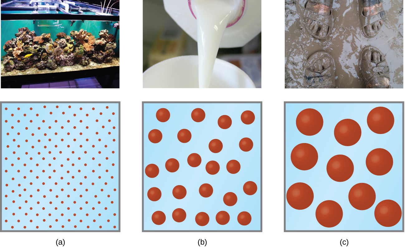 This figure contains three photos and corresponding particle diagrams. In a, a photo of an aquarium containing fish is shown. The particle diagram beneath it shows 90 tiny red spheres. In b, a photo is shown of milk being poured into a cup. The corresponding particle diagram shows about 25 medium sized red spheres.In c, a photo is shown of two pairs of sandal clad feet in mud. The particle diagram below shows 10 fairly large red spheres.