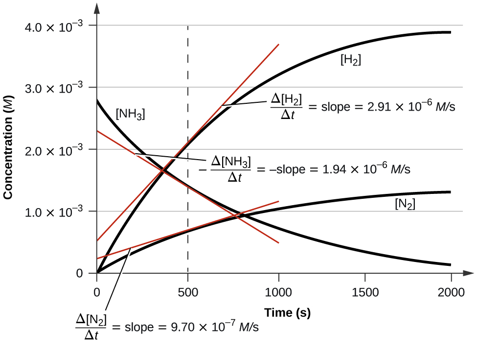 """A graph is shown with the label, """"Time ( s ),"""" appearing on the x-axis and, """"Concentration ( M ),"""" on the y-axis. The x-axis markings begin at 0 and end at 2000. The markings are labeled at intervals of 500. The y-axis begins at 0 and includes markings every 1.0 times 10 superscript negative 3, up to 4.0 times 10 superscript negative 3. A decreasing, concave up, non-linear curve is shown, which begins at about 2.8 times 10 superscript negative 3 on the y-axis and nearly reaches a value of 0 at the far right of the graph at the 2000 marking on the x-axis. This curve is labeled, """"[ N H subscript 3]."""" Two additional curves that are increasing and concave down are shown, both beginning at the origin. The lower of these two curves is labeled, """"[ N subscript 2 ]."""" It reaches a value of approximately 1.25 times 10 superscript negative 3 at 2000 seconds. The final curve is labeled, """"[ H subscript 2 ]."""" It reaches a value of about 3.9 times 10 superscript negative 3 at 2000 seconds. A red tangent line segment is drawn to each of the curves on the graph at 500 seconds. At 500 seconds on the x-axis, a vertical dashed line is shown. Next to the [ N H subscript 3] graph appears the equation """"negative capital delta [ N H subscript 3 ] over capital delta t = negative slope = 1.94 times 10 superscript negative 6 M / s."""" Next to the [ N subscript 2] graph appears the equation """"negative capital delta [ N subscript 2 ] over capital delta t = negative slope = 9.70 times 10 superscript negative 7 M / s."""" Next to the [ H subscript 2 ] graph appears the equation """"negative capital delta [ H subscript 2 ] over capital delta t = negative slope = 2.91 times 10 superscript negative 6 M / s."""""""