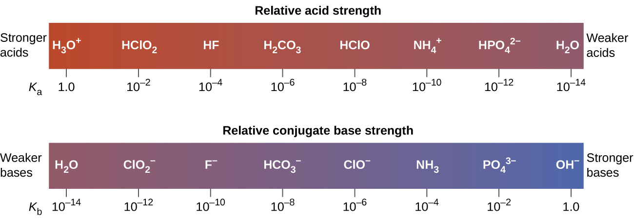 """The diagram shows two horizontal bars. The first, labeled, """"Relative acid strength,"""" at the top is red on the left and gradually changes to purple on the right. The red end at the left is labeled, """"Stronger acids."""" The purple end at the right is labeled, """"Weaker acids."""" Just outside the bar to the lower left is the label, """"K subscript a."""" The bar is marked off in increments with a specific acid listed above each increment. The first mark is at 1.0 with H subscript 3 O superscript positive sign. The second is ten raised to the negative two with H C l O subscript 2. The third is ten raised to the negative 4 with H F. The fourth is ten raised to the negative 6 with H subscript 2 C O subscript 3. The fifth is ten raised to a negative 8 with C H subscript 3 C O O H. The sixth is ten raised to the negative ten with N H subscript 4 superscript positive sign. The seventh is ten raised to a negative 12 with H P O subscript 4 superscript 2 negative sign. The eighth is ten raised to the negative 14 with H subscript 2 O. Similarly the second bar, which is labeled """"Relative conjugate base strength,"""" is purple at the left end and gradually becomes blue at the right end. Outside the bar to the left is the label, """"Weaker bases."""" Outside the bar to the right is the label, """"Stronger bases."""" Below and to the left of the bar is the label, """"K subscript b."""" The bar is similarly marked at increments with bases listed above each increment. The first is at ten raised to the negative 14 with H subscript 2 O above it. The second is ten raised to the negative 12 C l O subscript 2 superscript negative sign. The third is ten raised to the negative ten with F superscript negative sign. The fourth is ten raised to a negative eight with H C O subscript 3 superscript negative sign. The fifth is ten raised to the negative 6 with C H subscript 3 C O O superscript negative sign. The sixth is ten raised to the negative 4 with N H subscript 3. The seventh is ten raised to the negative 2 with P O subscrip"""