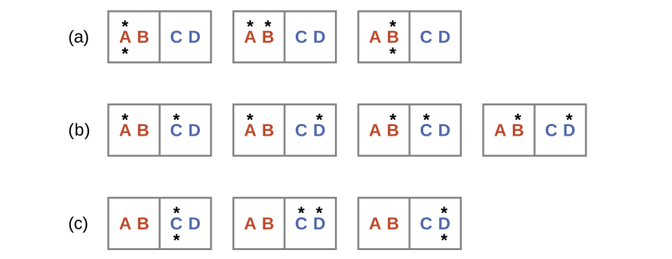 """Three rows labeled a, b, and c are shown and each contains rectangles with two sides where the left side is labeled, """"A,"""" and """"B,"""" and the right is labeled, """"C,"""" and """"D."""" Row a has three rectangles where the first has a dot above and below the letter A, the second has a dot above the A and B, and the third which has a dot above and below the letter B. Row b has four rectangles; the first has a dot above A and C, the second has a dot above A and D, the third has a dot above B and C and the fourth has a dot above B and D. Row c has three rectangles; the first has a dot above and below the letter C, the second has a dot above C and D and the third has a dot above and below the letter D."""