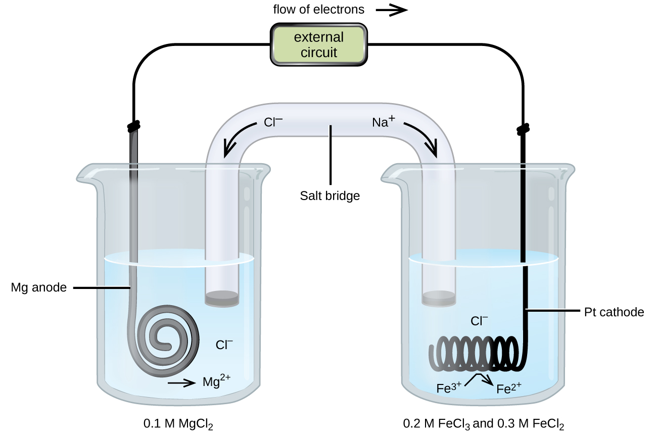 """This figure contains a diagram of an electrochemical cell. Two beakers are shown. Each is just over half full. The beaker on the left contains a colorless solution. The beaker on the right also contains a colorless solution. A glass tube in the shape of an inverted U connects the two beakers at the center of the diagram. The tube contents are colorless. The ends of the tubes are beneath the surface of the solutions in the beakers and a small gray plug is present at each end of the tube. At the center of the diagram, the tube is labeled """"Salt bridge."""" Each beaker shows a metal coils submerged in the liquid. The beaker on the left has a thin, gray, coiled strip that is labeled """"M g anode."""" The beaker on the right has a black wire that is oriented horizontally and coiled up in a spring-like appearance that is labeled """"P t cathode."""" Below the coil is the label """"F e superscript 3 plus"""" with a curved right arrowing pointing from that to the label """"F e superscript 2 plus."""" A wire extends across the top of the diagram that connects the ends of the M g strip and P t cathode just above the opening of each beaker. At the center of the wire above the two beakers is a rectangle labeled """"external circuit."""" Above the rectangle is the label """"flow of electrons"""" followed by a right pointing arrow. An arrow points down and to the right from the label """"N a superscript plus"""" at the upper right region of the salt bride. An arrow points down and to the left from the label """"C l superscript negative"""" at the upper left region of the salt bride. Below the graylug at the left end of the salt bridge in the surrounding solution in the left beaker is the label """"C l superscript negative."""" Below the coil on this side is a right arrow and the label """"M g superscript 2 plus."""" The label """"0.1 M M g C l subscript 2"""" appears beneath the left beaker. The label """"0.2 M F e C l subscript 3 and 0.3 M F e C l subscript 2."""" appears beneath the right beaker."""