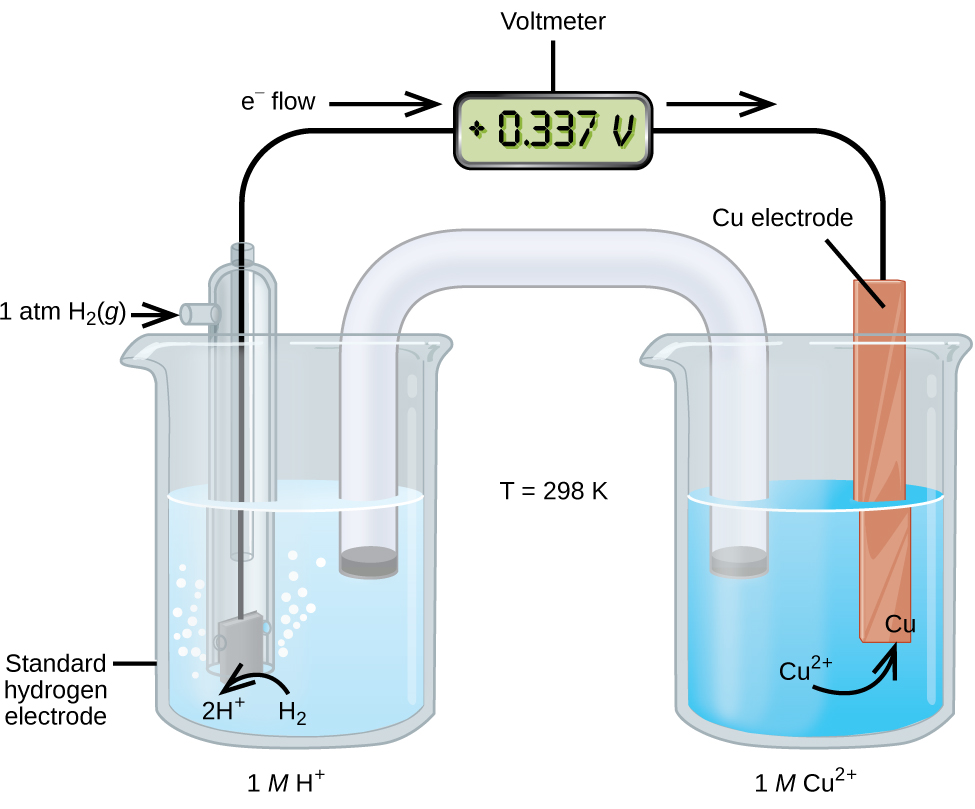 """This figure contains a diagram of an electrochemical cell. Two beakers are shown. Each is just over half full. The beaker on the left contains a clear, colorless solution and is labeled below as """"1 M H superscript plus."""" The beaker on the right contains a blue solution and is labeled below as """"1 M C u superscript 2 plus."""" A glass tube in the shape of an inverted U connects the two beakers at the center of the diagram. The tube contents are colorless. The ends of the tubes are beneath the surface of the solutions in the beakers and a small graylug is present at each end of the tube. The beaker on the left has a glass tube partially submersed in the liquid. Bubbles are rising from the gray square, labeled """"Standard hydrogen electrode"""" at the bottom of the tube. A curved arrow points up to the right, indicating the direction of the bubbles. A black wire extends from the gray square up the interior of the tube through a small port at the top to a rectangle with a digital readout of """"positive 0.337 V,"""" which is labeled """"Voltmeter."""" A second small port extends out the top of the tube to the left. An arrow points to the port opening from the left. The base of this arrow is labeled """"1 a t m H subscript 2 ( g )."""" The beaker on the right has an orange-brown strip that is labeled """"C u electrode"""" at the top. A wire extends from the top of this strip to the voltmeter. An arrow points toward the voltmeter from the left which is labeled """"e superscript negative flow."""" Similarly, an arrow points away from the voltmeter to the right. A curved arrow extends from the surrounding solution to the standard hydrogen electrode in the beaker. The end of the arrow is labeled """"H subscript 2"""" and tip of this arrow is labeled """"2 H superscript plus."""" A curved arrow extends from the """"C u superscript 2 plus"""" label in the solution to a """"C u"""" label at the lower edge of the C u electrode. Between the two beakers is the label """"T equals 298 K."""""""