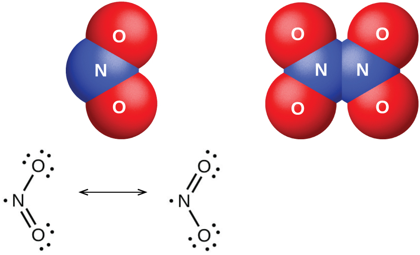 """Two space-filling models and two Lewis structures are shown. The left space-filling model shows a blue atom labeled, """"N,"""" bonded to two red atoms labeled, """"O,"""" while the right space-filling model shows two blue atoms labeled, """"N,"""" each bonded to two red atoms labeled, """"O."""" The left Lewis structure shows a nitrogen atom with one lone electron single bonded to an oxygen atom with three lone pairs of electrons. The nitrogen atom is also double bonded to an oxygen atom with two lone pairs of electrons. The right structure, which is connected by a double-headed arrow to the first, is a diagram showing a similar Lewis structure, but the position of the double bond and the number of electron pairs on the oxygen atoms have switched."""