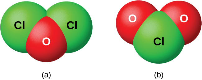 """Two space filling models are shown and labeled, """"a,"""" and """"b."""" Model a shows a red atom labeled, """"O,"""" bonded to two green atoms labeled, """"C l,"""" in a v-shape. Model b shows a green atom labeled, """"C l,"""" bonded to two red atoms labeled, """"O,"""" in a v-shape."""