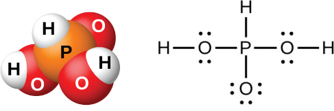 """A space filling model shows an orange atom labeled, """"P,"""" bonded on three sides to red atoms labeled, """"O,"""" and on the other side to a white atom labeled, """"H."""" Two of the red atoms are bonded to white atoms labeled, """"H."""" A Lewis structure is also shown in which a phosphorus atom is single bonded to a hydrogen atom and three oxygen atoms, two of which have two lone pairs of electrons and single bonds to hydrogen atoms, and one of which has three lone pairs of electrons."""