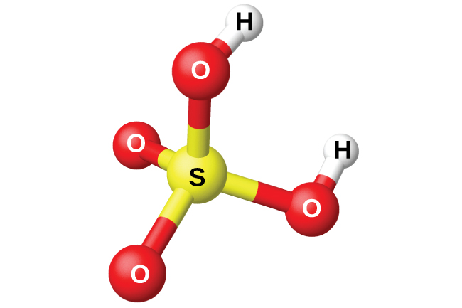 """A space filling model shows a yellow atom labeled, """"S,"""" bonded on four sides to red atoms labeled, """"O."""" Two of the red atoms are bonded to white atoms labeled, """"H."""""""