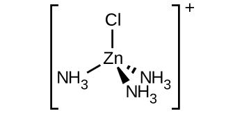 Inside of brackets, a central Z n atom is bonded to a C l atom and three N atoms in N H subscript 3 groups in a tetrahedral spatial arrangement. Short line segments are used to represent a bond extending above to the C l atom and down and to the left to the N of the N H subscript 3 group from the Z n atom. A dashed wedge with the vertex at the Z n atom and wide end at the N atom of an N H subscript 3 group is used to represent a bond down and to the right of the Z n atom. The final bond is indicated by a similar solid wedge again directed down and only slightly right of center beneath the Z n atom to the N of an N H subscript 3 group. Outside the brackets a superscript plus sign is shown.;
