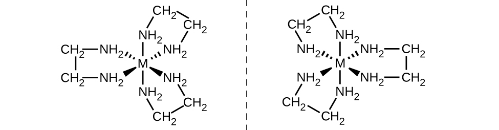"""Two structures are shown with a vertical dashed line segment between them. The structure left of this line segment has a central M representing a metal atom. To this atom, six N H subscript 2 groups are attached with single bonds. These bonds are indicated with line segments extending above and below, dashed wedges extending up and to the left and right, and solid wedges extending below and to the left and right. The bonds to these groups are all directed toward the N atoms. The N H subscript 2 groups are each connected to C atoms of C H subscript 2 groups extending outward from the central M atom. These C H subscript 2 groups are connected in pairs with bonds indicated by short line segments. This structure has the overall appearance of a flower with three petals, two of which are equidistant from the dashed line. A mirror image of this structure appears on the right side of the dashed line, again with two of the """"petals"""" equidistant from the dashed line to its left."""