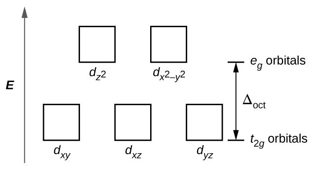 """A diagram is shown with a vertical arrow pointing upward along the height of the diagram at its left side. This arrow is labeled, """"E."""" to the right of this arrow are two rows of squares outlined in yellow. The first row has three evenly spaced squares labeled left to right, """"d subscript ( x y ),"""" """"d subscript ( x z ),"""" and, """"d subscript ( y z )."""" The second row is positioned just above the first and includes two evenly spaced squares labeled, """"d subscript ( z superscript 2 ),"""" and, """"d subscript ( x superscript 2 minus y superscript 2 )."""" At the right end of the diagram, a short horizontal line segment is drawn just right of the lower side of the rightmost square. A double sided arrow extends from this line segment to a second horizontal line segment directly above the first and right of the lower side of the squares in the second row. The arrow is labeled """" capital delta subscript oct."""". The lower horizontal line segment is similarly labeled """"t subscript 2 g orbitals"""" and the upper line segment is labeled """"e subscript g orbitals."""""""