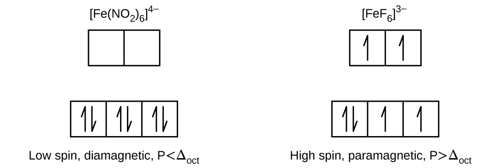 """A diagram is shown with two columns and two rows of squares outlined in yellow. The first column is labeled """"[ F e ( N O subscript 2 ) subscript 6 ] superscript 4 negative sign."""" The second is labeled, """"[ F e F subscript 6 ] superscript 3 negative sign."""" In the left column, three linked squares outlined in yellow are shown. Each of the squares contains two half arrows, one pointing up and one pointing down. In a row just above, two empty linked squares are shown. The label, """"Low spin, diamagnetic, P less than capital delta subscript oct,"""" is provided below the column. In the right column, three linked squares outlined in yellow are shown. The square on the left contains two half arrows, one pointing up and one pointing down. The other two squares each contain a single upward pointing half arrow. In a row just above, two linked squares are shown which each contain a single upward pointing half arrow. The label, """"High spin, paramagnetic, P greater than capital delta subscript oct,"""" is provided below the column."""