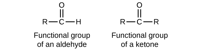 """Five structures are shown. The first is a C atom with an R group bonded to the left and an H atom to the right. An O atom is double bonded above the C atom. This structure is labeled, """"Functional group of an aldehyde."""" The second structure shows a C atom with R groups bonded to the left and right. An O atom is double bonded above the C atom. This structure is labeled, """"Functional group of a ketone."""" The third structure looks exactly like the functional group of a ketone. The fourth structure is labeled C H subscript 3 C H O. It is also labeled, """"An aldehyde,"""" and """"ethanal (acetaldehyde)."""" This structure has a C atom to which 3 H atoms are bonded above, below, and to the left. In red to the right of this C atom, a C atom is attached which has an O atom double bonded above and an H atom bonded to the right. The O atom as two sets of electron dots. The fifth structure is labeled C H subscript 3 C O C H subscript 2 C H subscript 3. It is also labeled, """"A ketone,"""" and """"butanone."""" This structure has a C atom to which 3 H atoms are bonded above, below, and to the left. To the right of this in red is a C atom to which an O atom is double bonded above. The O atom has two sets of electron dots. Attached to the right of this red C atom in black is a two carbon atom chain with H atoms attached above, below, and to the right."""