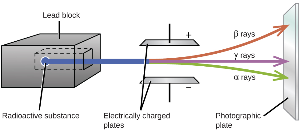 """A diagram is shown. A gray box on the left side of the diagram labeled """"Lead block"""" has a chamber hollowed out in the center in which a sample labeled """"Radioactive substance"""" is placed. A blue beam is coming from the sample, out of the block, and passing through two horizontally placed plates that are labeled """"Electrically charged plates."""" The top plate is labeled with a positive sign while the bottom plate is labeled with a negative sign. The beam is shown to break into three beams as it passes in between the plates; in order from top to bottom, they are red, labeled """"beta rays,"""" purple labeled """"gamma rays"""" and green labeled """"alpha rays."""" The beams are shown to hit a vertical plate labeled """"Photographic plate"""" on the far right side of the diagram."""