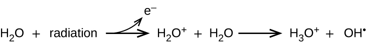 This image shows a reaction. It starts with H subscript 2 O plus radiation. There is a right-facing arrow which points to H subscript 2 O superscript positive sign plus H subscript 2 O. From the arrow, there is another arrow that curves upward and points to an e superscript negative sign. After the second H subscript 2 O there is another right-facing arrow which points to H subscript 3 O superscript positive sign plus O H superscript negative sign.