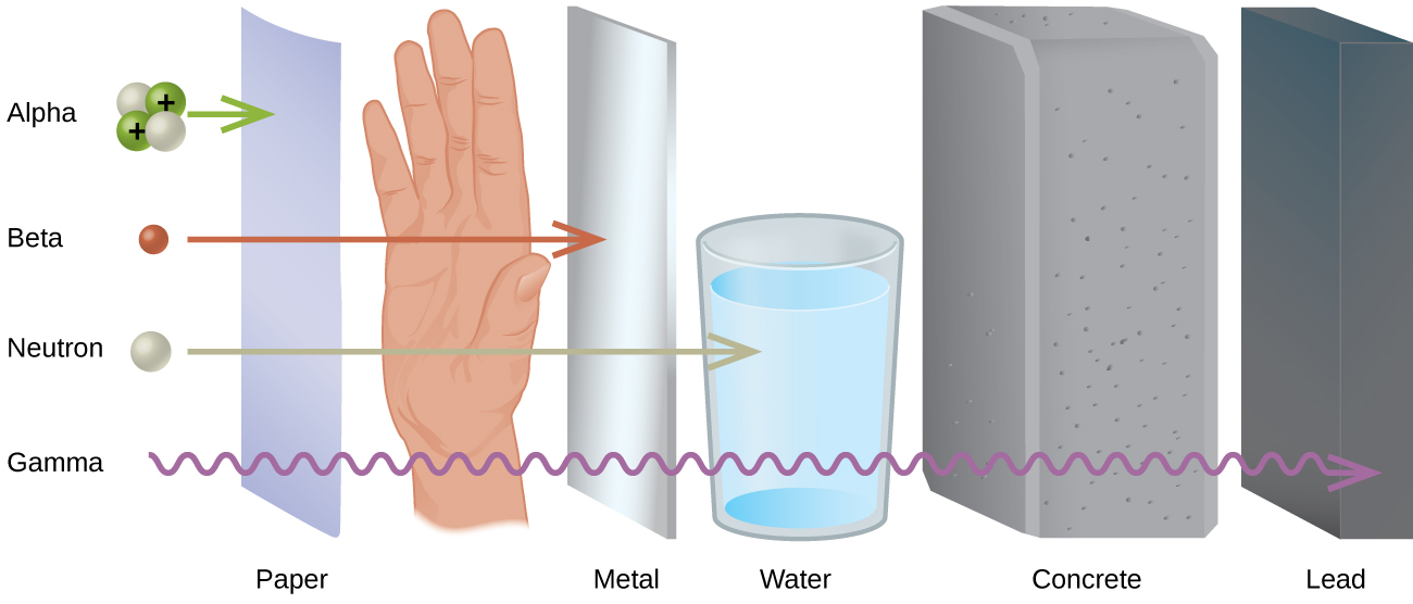 """A diagram shows four particles in a vertical column on the left, followed by an upright sheet of paper, a person's hand, an upright sheet of metal, a glass of water, a thick block of concrete and an upright, thick piece of lead. The top particle listed is made up of two white spheres and two green spheres that are labeled with positive signs and is labeled """"Alpha."""" A right-facing arrow leads from this to the paper. The second particle is a red sphere labeled """"Beta"""" and is followed by a right-facing arrow that passes through the paper and stops at the hand. The third particle is a white sphere labeled """"Neutron"""" and is followed by a right-facing arrow that passes through the paper, hand and metal but is stopped at the glass of water. The fourth particle is shown by a squiggly arrow and it passes through all of the substances but stops at the lead. Terms at the bottom read, from left to right, """"Paper,"""" """"Metal,"""" """"Water,"""" """"Concrete"""" and """"Lead."""""""