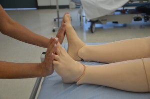 A person puts their hands on the bottom sides of a mannequin's feet.