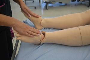 Assess plantar flexion