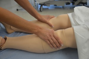 Assess bilateral lower legs