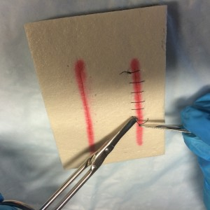 Snip suture distal to the knot