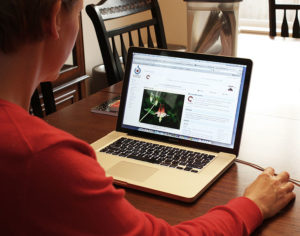 A woman sitting at a table, looking at a laptop.