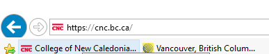 The bookmarks bar appears below the address bar in Explorer.