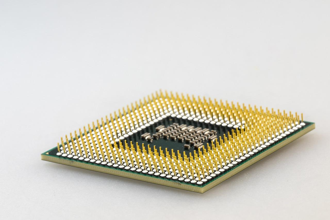 A central processing unit (CPU).