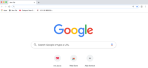 The Google homepage has a search box where you type your query.