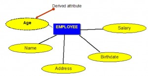 Blue rectangle with the word EMPLOYEE, and connected by a line to five different yellow ovals with the words: Age, Name, Address, Birthdate, Salary.