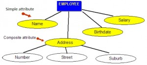 Blue rectangle with the word EMPLOYEE. Under this are four yellow ovals with the words Name, Address, Birthdate, Salary. There are lines between the rectangle and yellow ovals. Under the Address oval are three white ovals with the words Number, Street, Suburb.