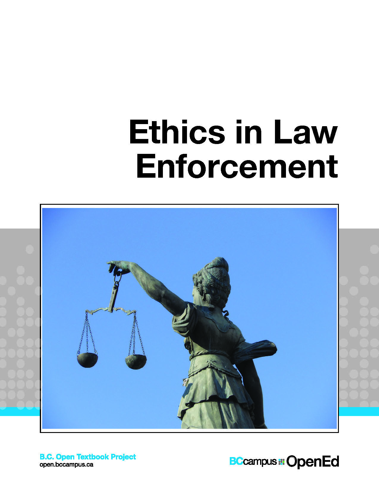 Cover image for Ethicsin Law Enforcement-McCartney
