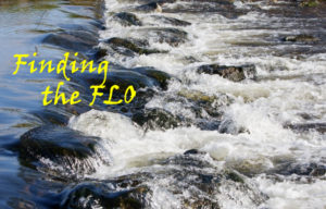 """A picture of a stream with the words """"Finding the FLO"""""""