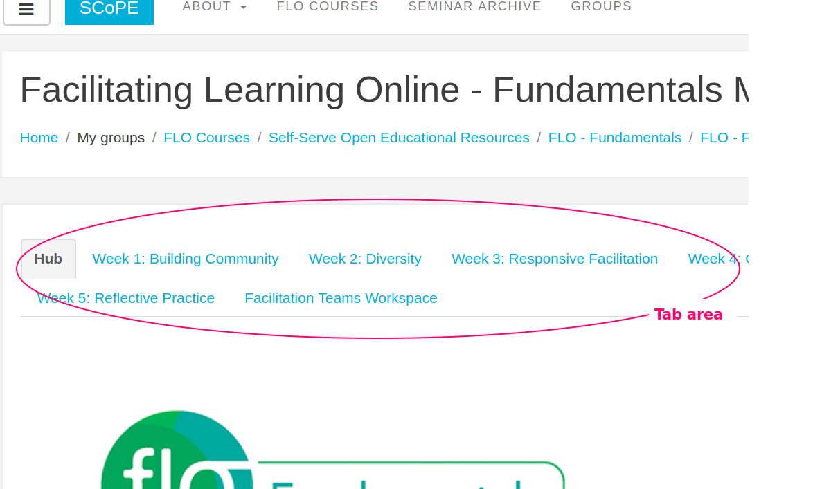 A screenshot of tabs listed on the FLO Fundamentals website