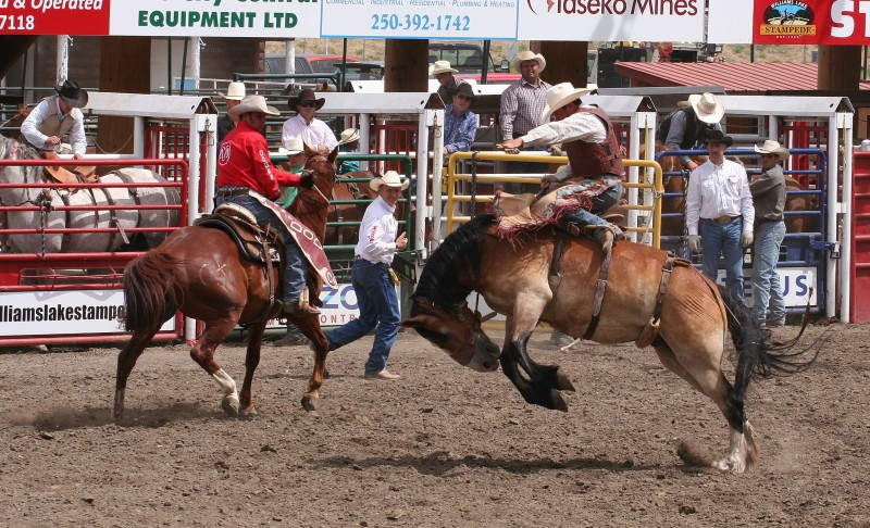 Figure 2. Stampede at Williams Lake BC by Moosealope