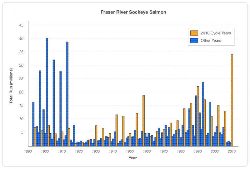 Figure 1 Fraser River Sockeye Salmon