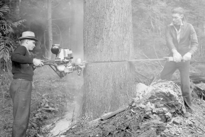 Figure 1. Men felling a tree with a motorized saw 1942