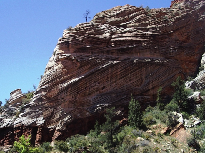 Cross-bedded Jurassic Navajo Formation aeolian sandstone at Zion National Park, Utah. In most of the layers the cross-beds dip down toward the right, implying wind direction from right to left during deposition. One bed dips in the opposite direction, implying an abnormal wind.
