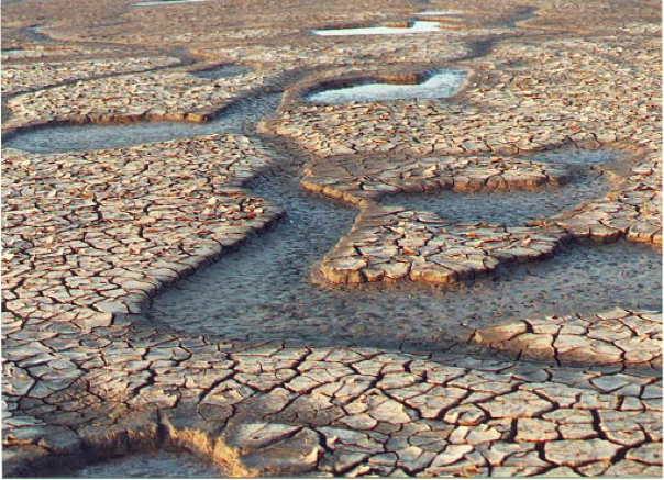 Mud cracks in a tidal flat area in England [Alan Parkinson CC-BY-SA http://bit.ly/1KwF3HK]