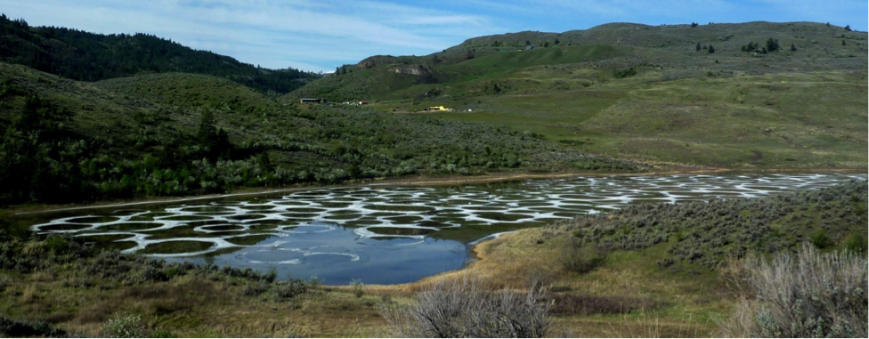 Spotted Lake, near Osoyoos, B.C. This photo was taken in May when the water was relatively fresh because of winter rains. By the end of the summer the surface of this lake is typically fully encrusted with salt deposits.
