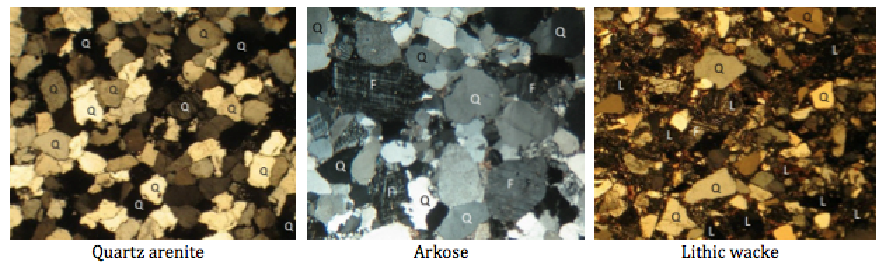 Photos of thin sections of three types of sandstone. Some of the minerals are labelled: Q=quartz, F=feldspar and L= lithic (rock fragments). The quartz arenite and arkose have relatively little silt-clay matrix, while the lithic wacke has abundant matrix. [SE]