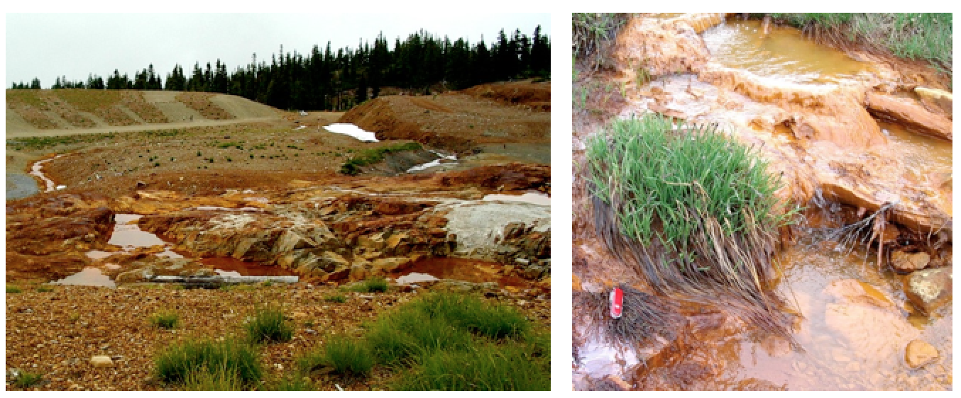 Acid mine drainage. Left: Mine waste where exposed rocks undergo oxidation reactions and generate acid at the Washington Mine, B.C. Right: an example of acid drainage downstream from the mine site. [Steven Earle CC-BY 4.0]
