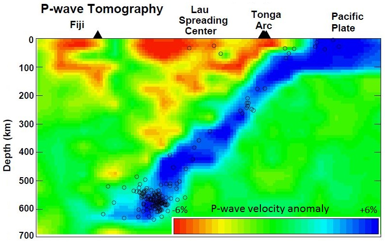 P-wave tomographic profile of area in the southern Pacific Ocean from southeast of Tonga to Fiji. Blue represents rock that has relatively high seismic velocities, while yellow and red represent rock with low velocities. Open circles are earthquakes used in the study. [from: Zhao, D., Y. Xu, D.A. Wiens, L. Dorman, J. Hildebrand, and S. Webb, Depth extent of the Lau back-arc spreading center and its relationship to the subduction process, Science, 278, 254-257, 1997, used with permission]